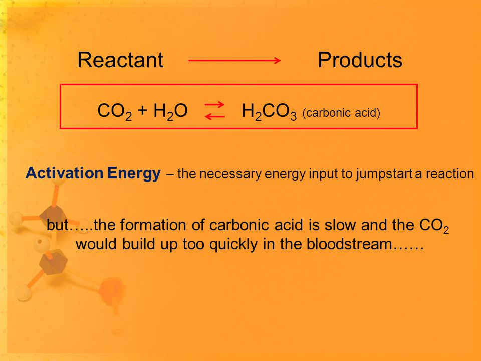 ReactantProducts Activation Energy – the necessary energy input to jumpstart a reaction but…..the formation of carbonic acid is slow and the CO 2 would build up too quickly in the bloodstream…… CO 2 + H 2 OH 2 CO 3 (carbonic acid)