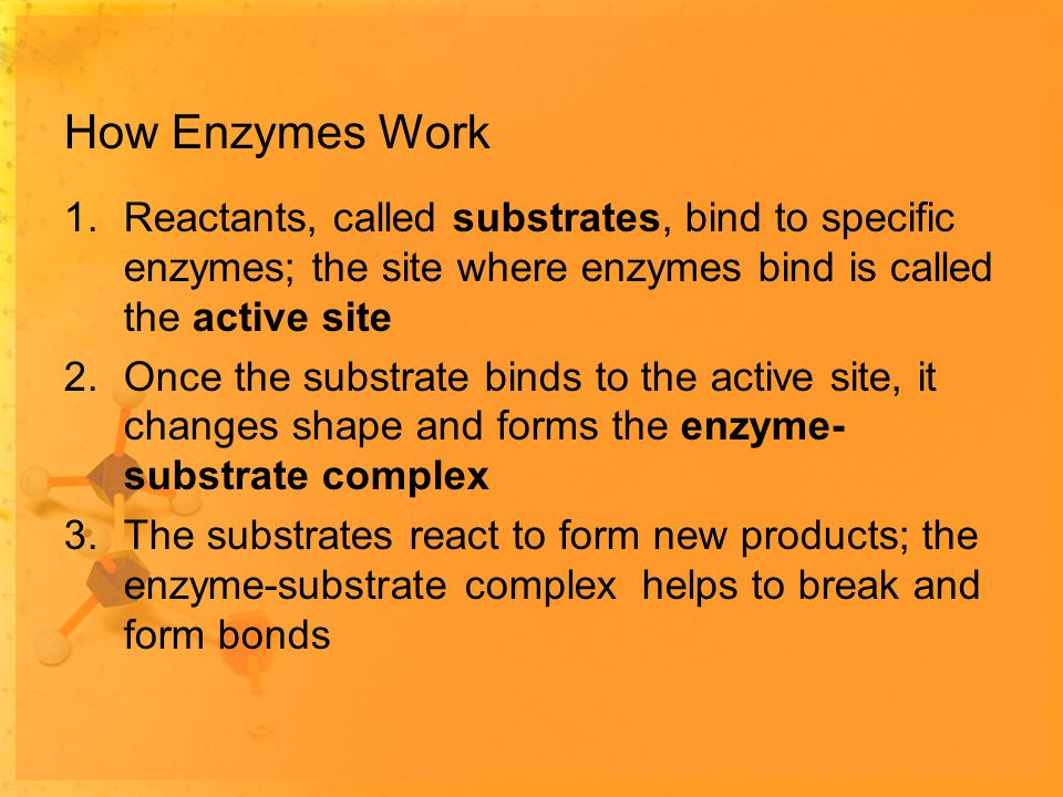 How Enzymes Work 1.Reactants, called substrates, bind to specific enzymes; the site where enzymes bind is called the active site 2.Once the substrate binds to the active site, it changes shape and forms the enzyme- substrate complex 3.The substrates react to form new products; the enzyme-substrate complex helps to break and form bonds
