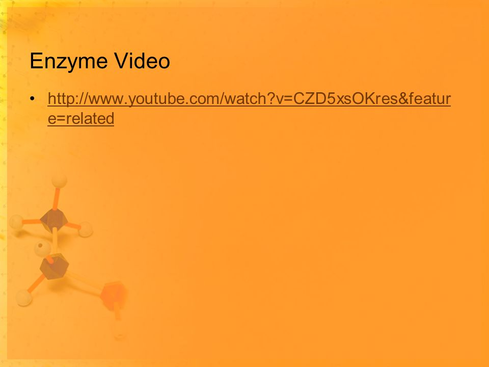 Enzyme Video http://www.youtube.com/watch v=CZD5xsOKres&featur e=relatedhttp://www.youtube.com/watch v=CZD5xsOKres&featur e=related