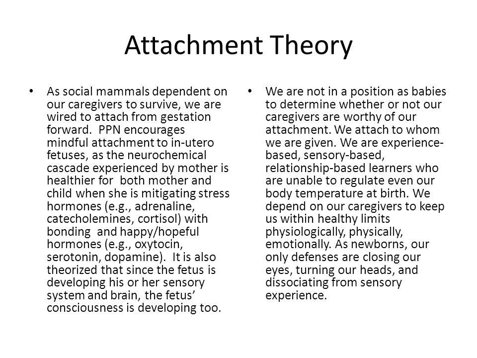 References Acceptance.(n.d.) Princeton University.