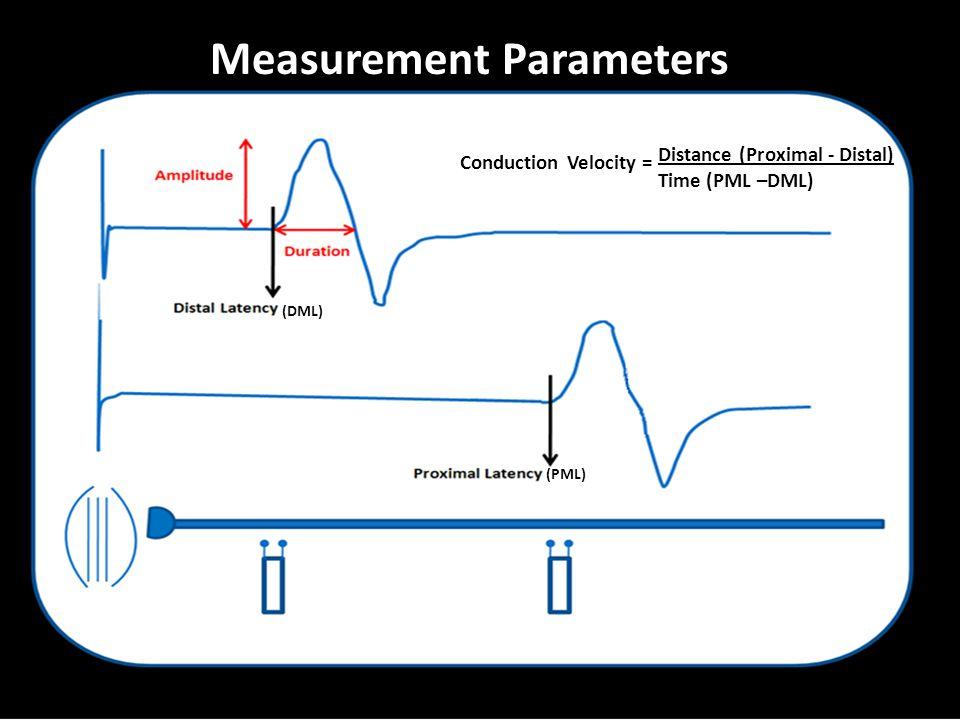 Measurement Parameters (DML) (PML) Conduction Velocity = Distance (Proximal - Distal) Time (PML –DML)