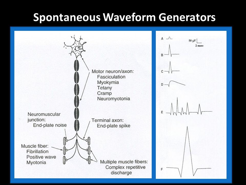 Spontaneous Waveform Generators