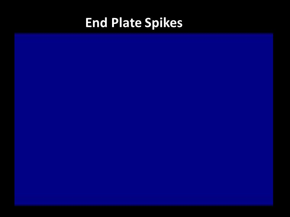 End Plate Spikes