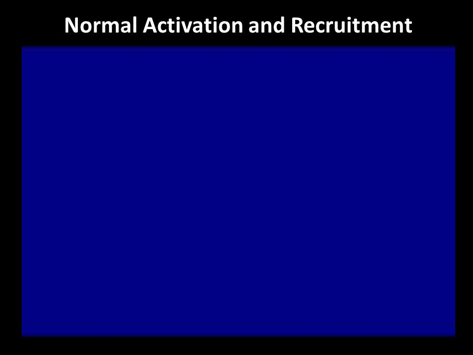 Normal Activation and Recruitment