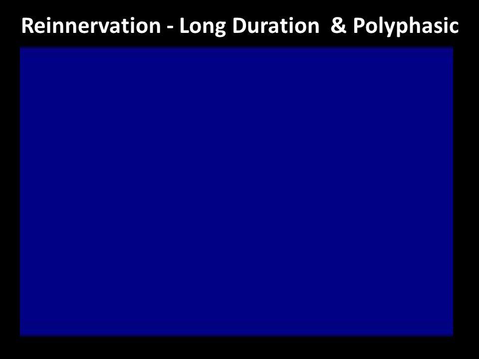 Reinnervation - Long Duration & Polyphasic