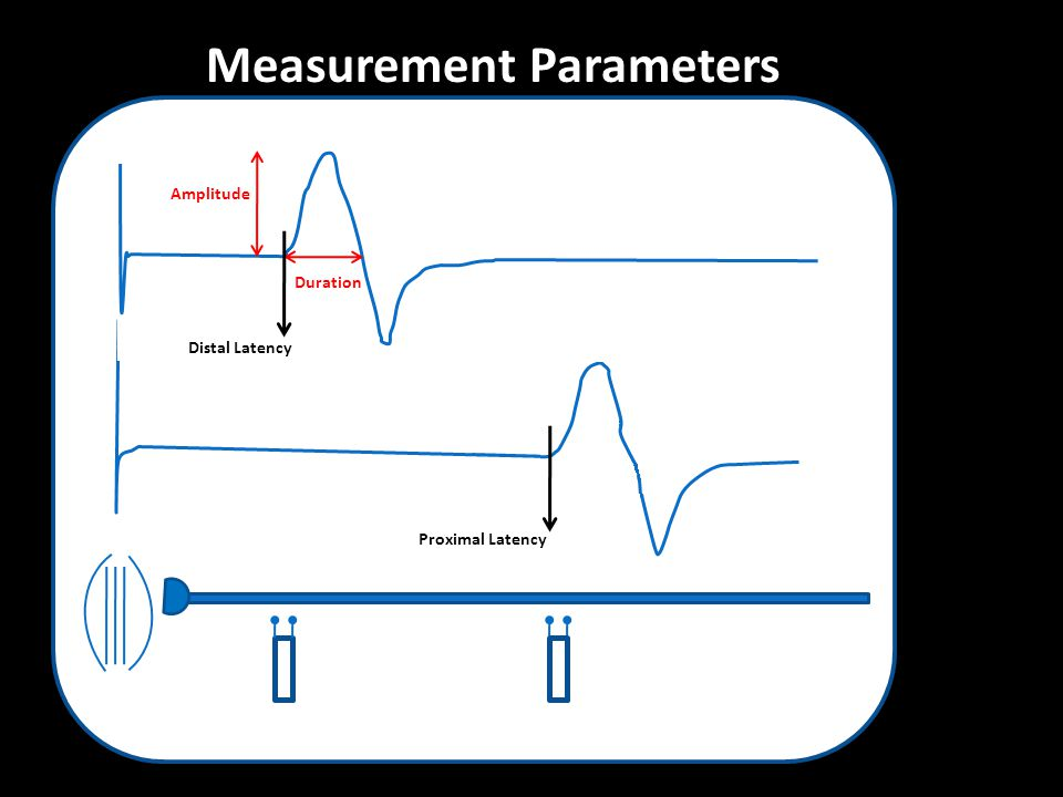 Amplitude Duration Distal Latency Proximal Latency Measurement Parameters
