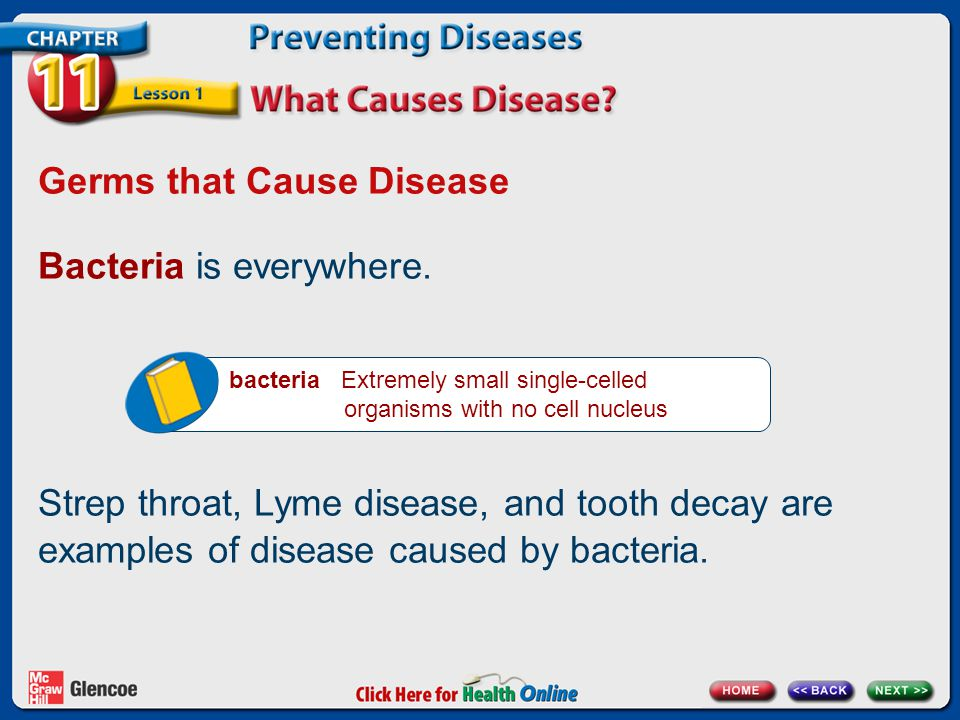 Germs that Cause Disease Bacteria is everywhere.