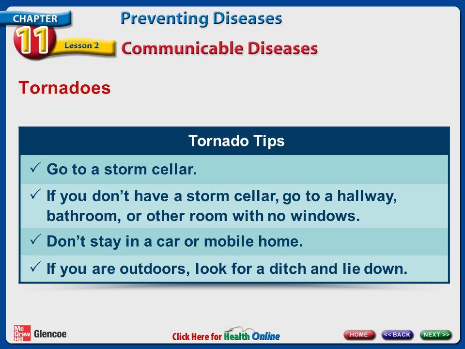 Tornadoes Tornado Tips  Go to a storm cellar.