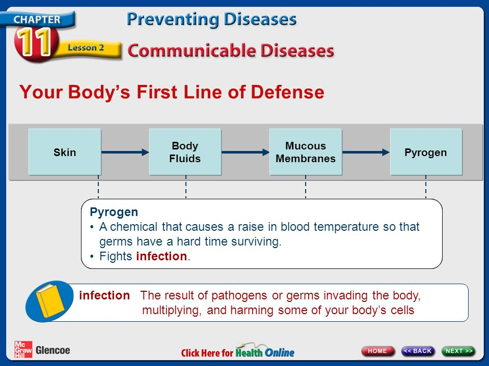 Your Body's First Line of Defense Skin Body Fluids Mucous Membranes Pyrogen Skin Your skin is like a wall around your inner organs.