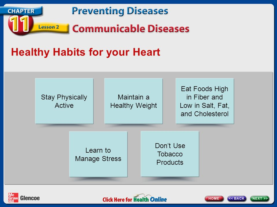 Healthy Habits for your Heart Stay Physically Active Maintain a Healthy Weight Eat Foods High in Fiber and Low in Salt, Fat, and Cholesterol Learn to Manage Stress Don't Use Tobacco Products
