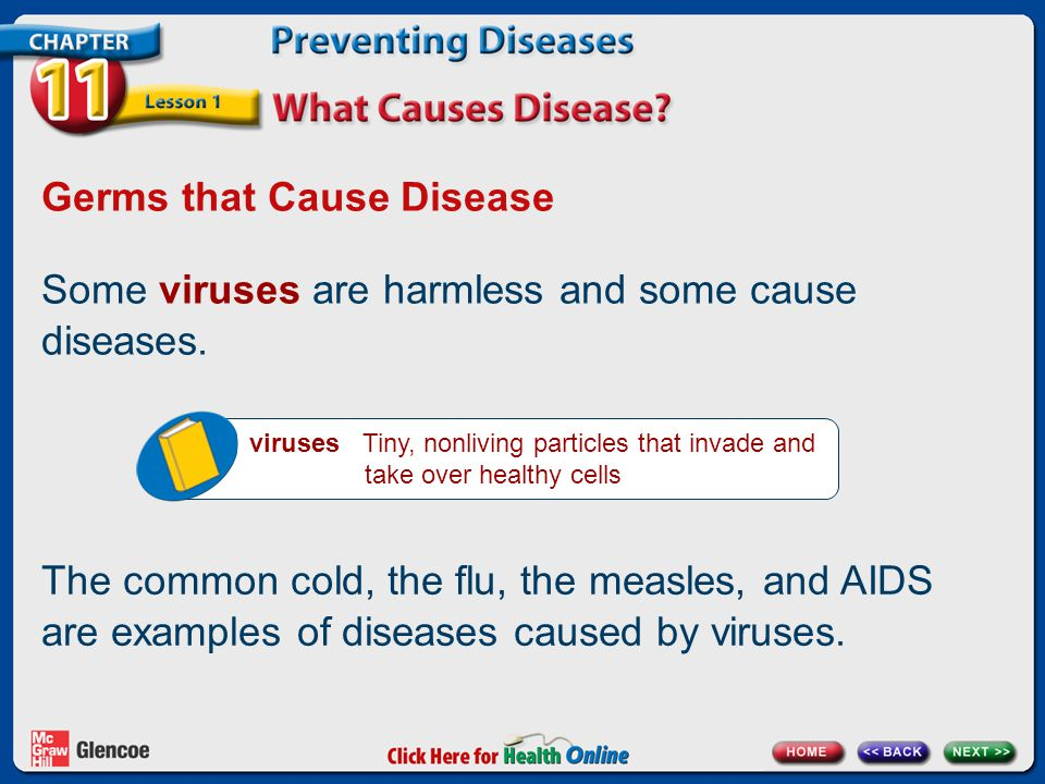 Germs that Cause Disease Some viruses are harmless and some cause diseases.