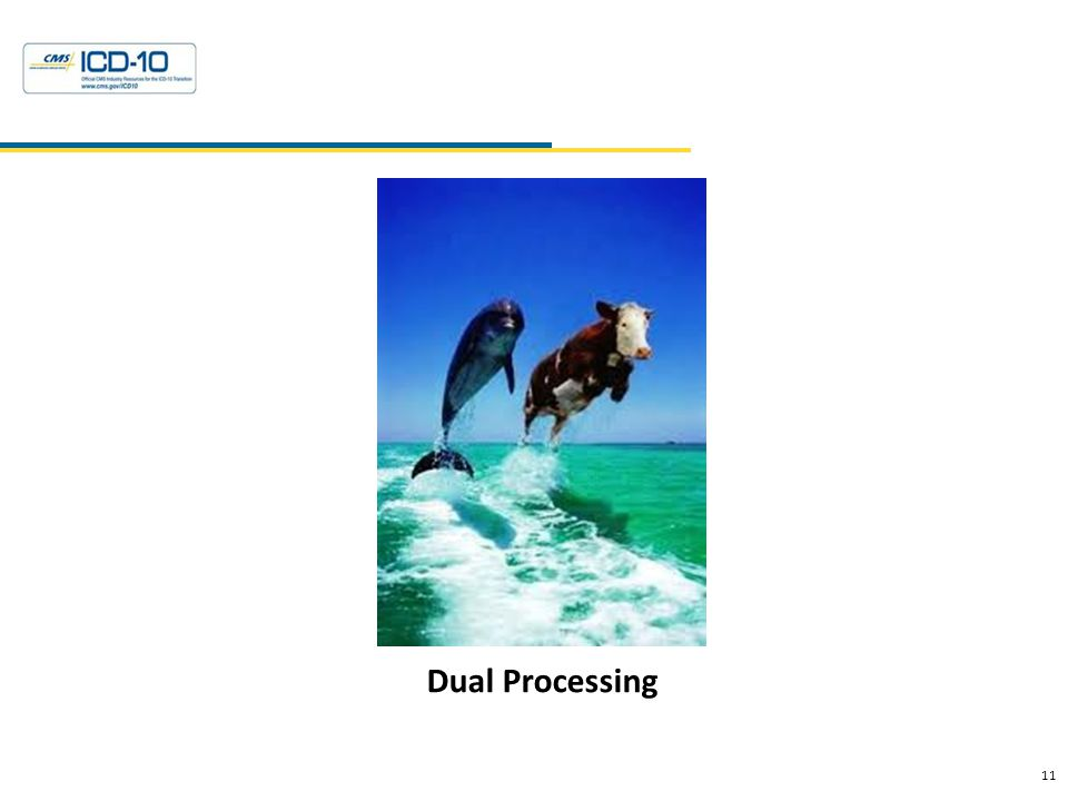Dual Processing 11 Health Data Consulting © 2010