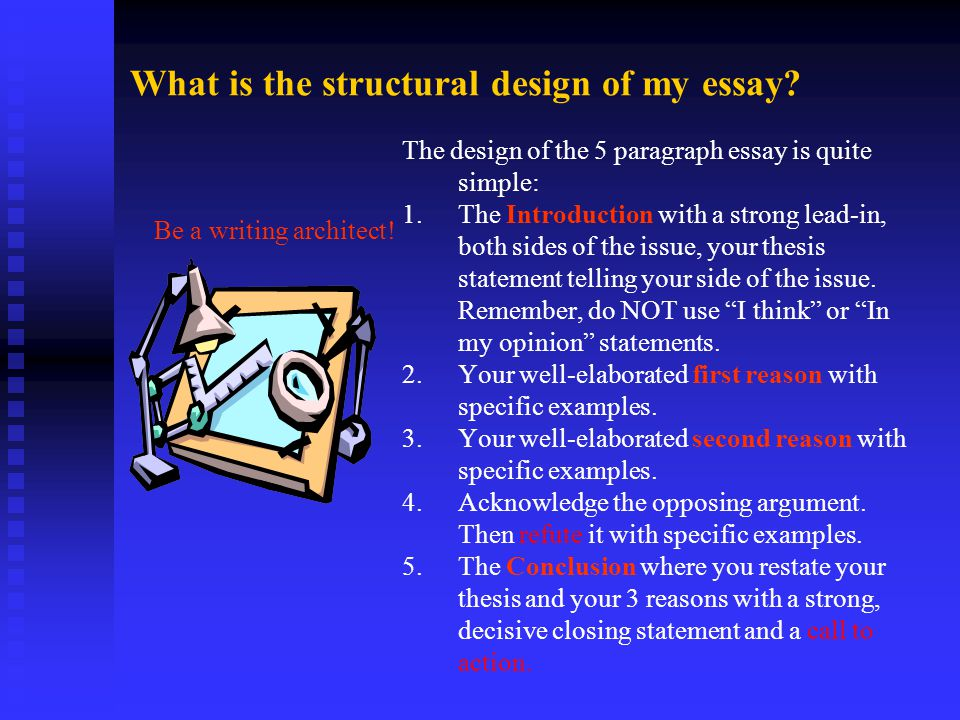 What is the structural design of my essay.