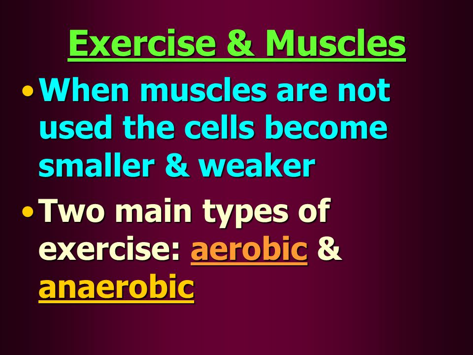 Exercise & Muscles When muscles are not used the cells become smaller & weakerWhen muscles are not used the cells become smaller & weaker Two main typ