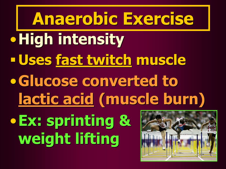 Anaerobic Exercise High intensityHigh intensity  Uses fast twitch muscle Glucose converted to lactic acid (muscle burn)Glucose converted to lactic ac