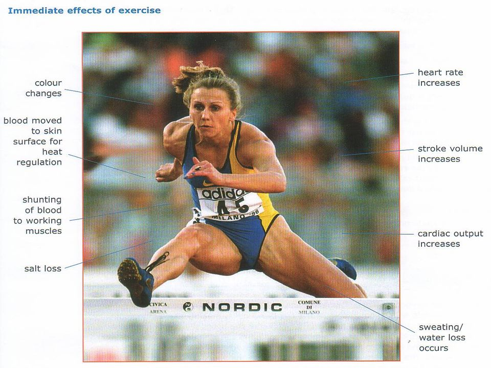 ANAEROBIC LACTIC SYSTEM  THE ANAEROBIC LACTIC SYSTEM IS USED FOR SHORTER DURATION, HIGH INTENSITY ACTIVITY TYPICALLY LASTING BETWEEN 30-90 SECONDS.