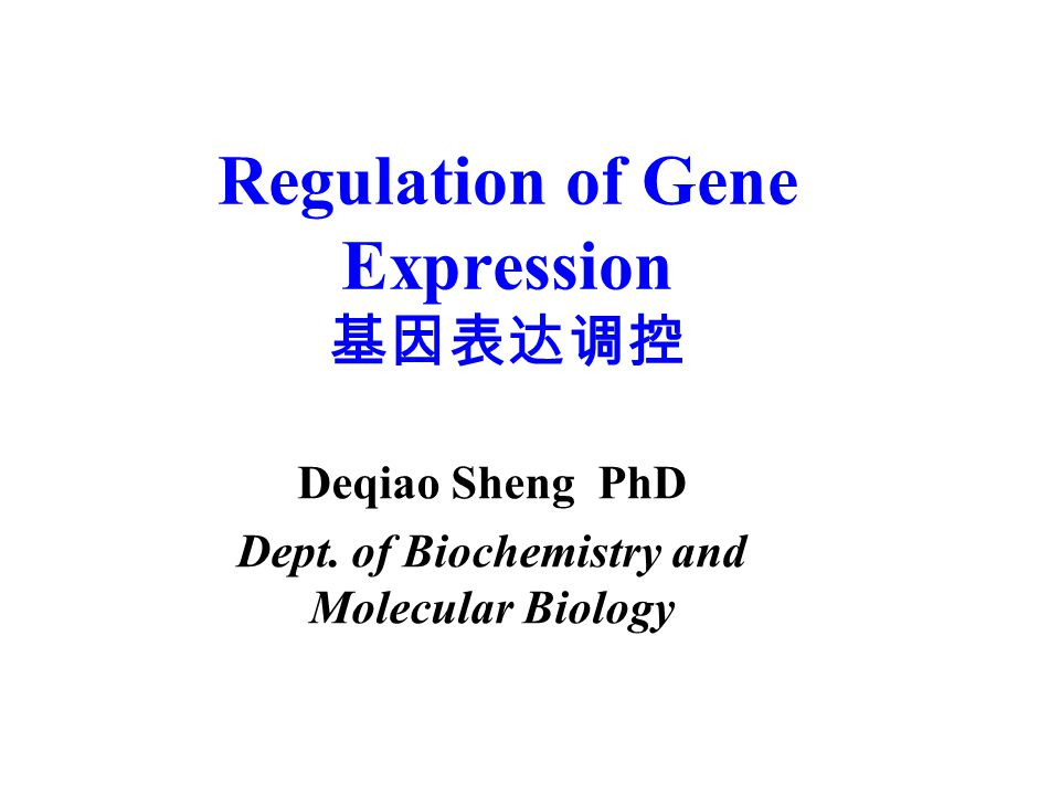 Regulation of Gene Expression 基因表达调控 Deqiao Sheng PhD Dept. of Biochemistry and Molecular Biology