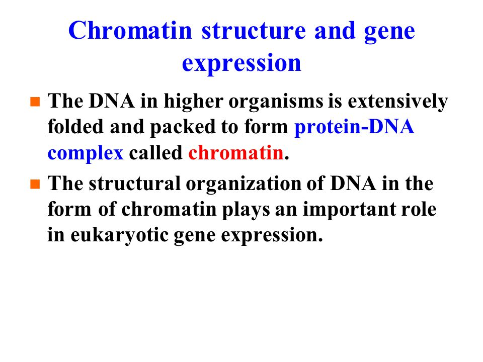 Chromatin structure and gene expression The DNA in higher organisms is extensively folded and packed to form protein-DNA complex called chromatin.