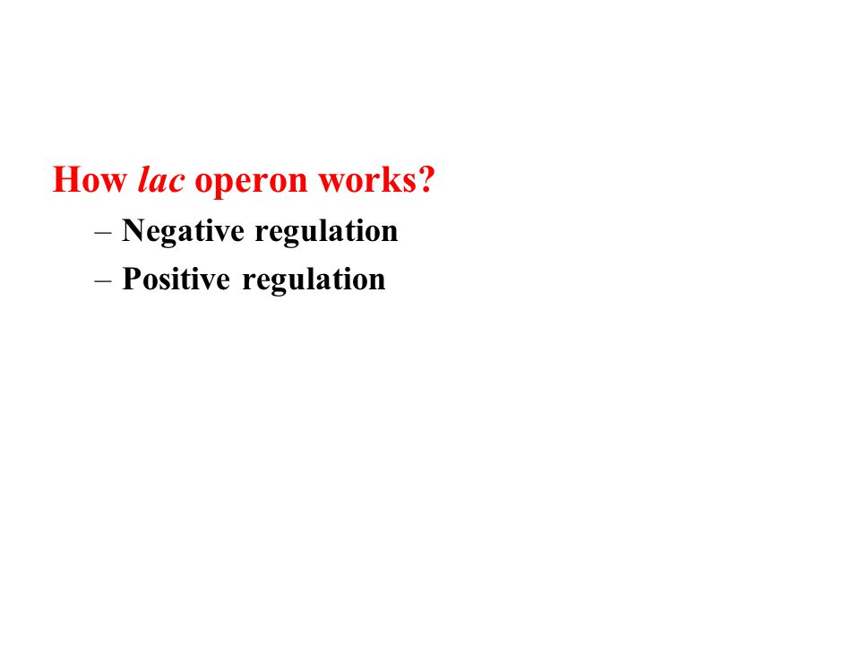 How lac operon works –Negative regulation –Positive regulation