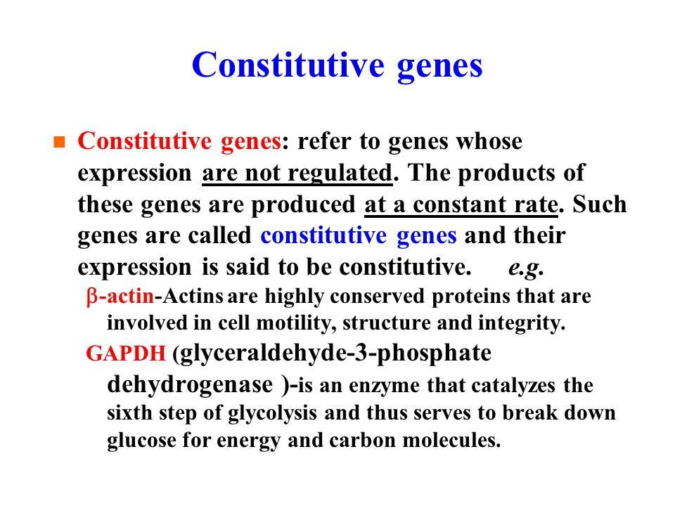 Constitutive genes Constitutive genes: refer to genes whose expression are not regulated.