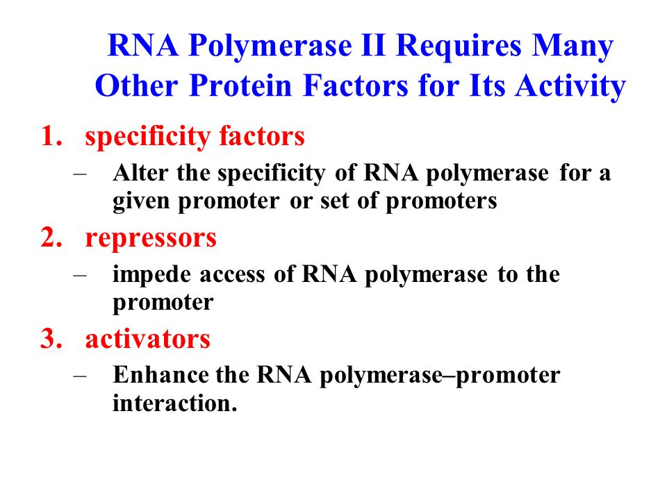RNA Polymerase II Requires Many Other Protein Factors for Its Activity 1.specificity factors –Alter the specificity of RNA polymerase for a given promoter or set of promoters 2.repressors –impede access of RNA polymerase to the promoter 3.activators –Enhance the RNA polymerase–promoter interaction.