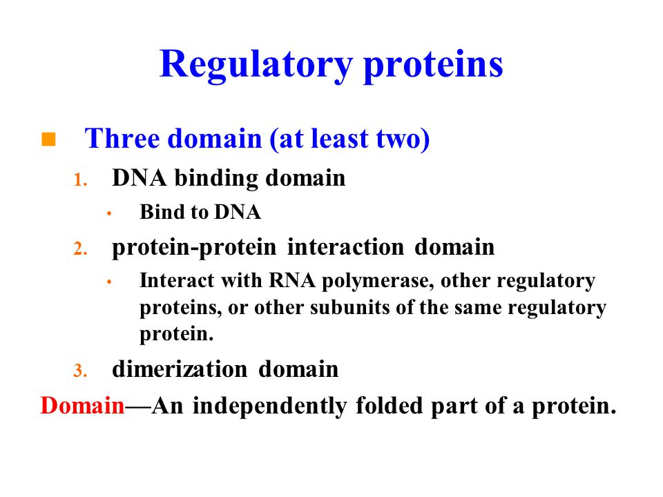 Regulatory proteins Three domain (at least two) 1.