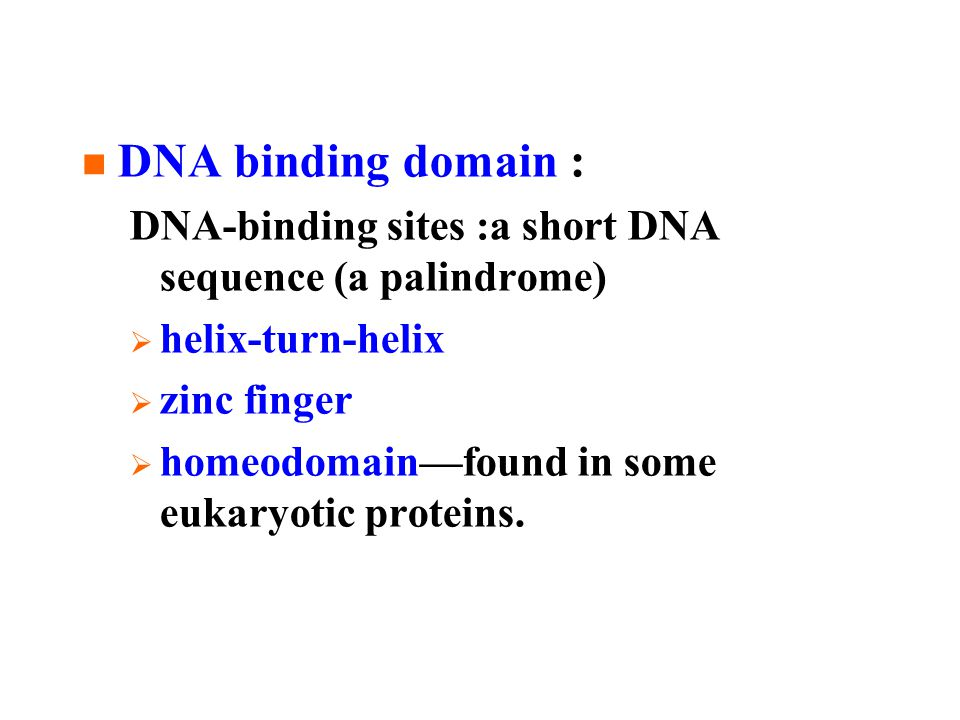 DNA binding domain : DNA-binding sites :a short DNA sequence (a palindrome)  helix-turn-helix  zinc finger  homeodomain—found in some eukaryotic proteins.
