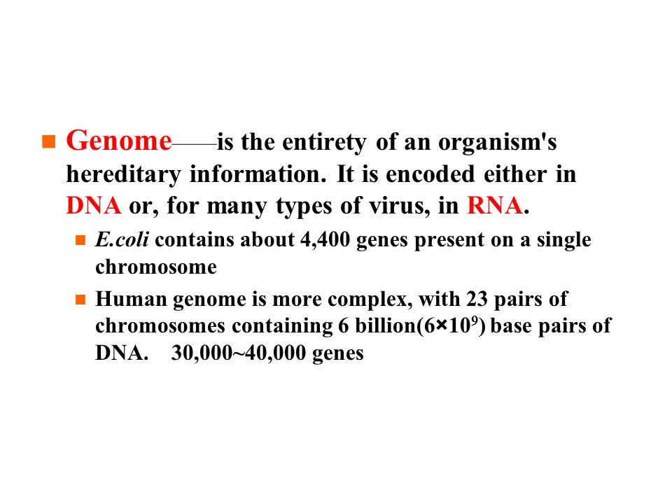 Genome —— is the entirety of an organism s hereditary information.