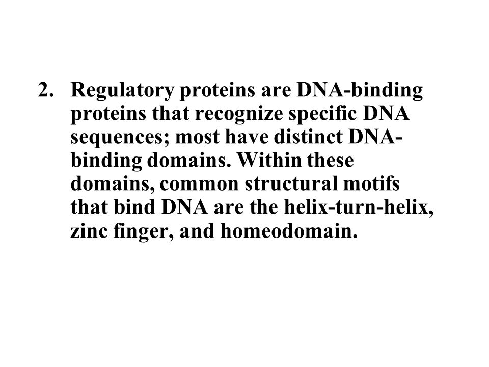 2.Regulatory proteins are DNA-binding proteins that recognize specific DNA sequences; most have distinct DNA- binding domains.