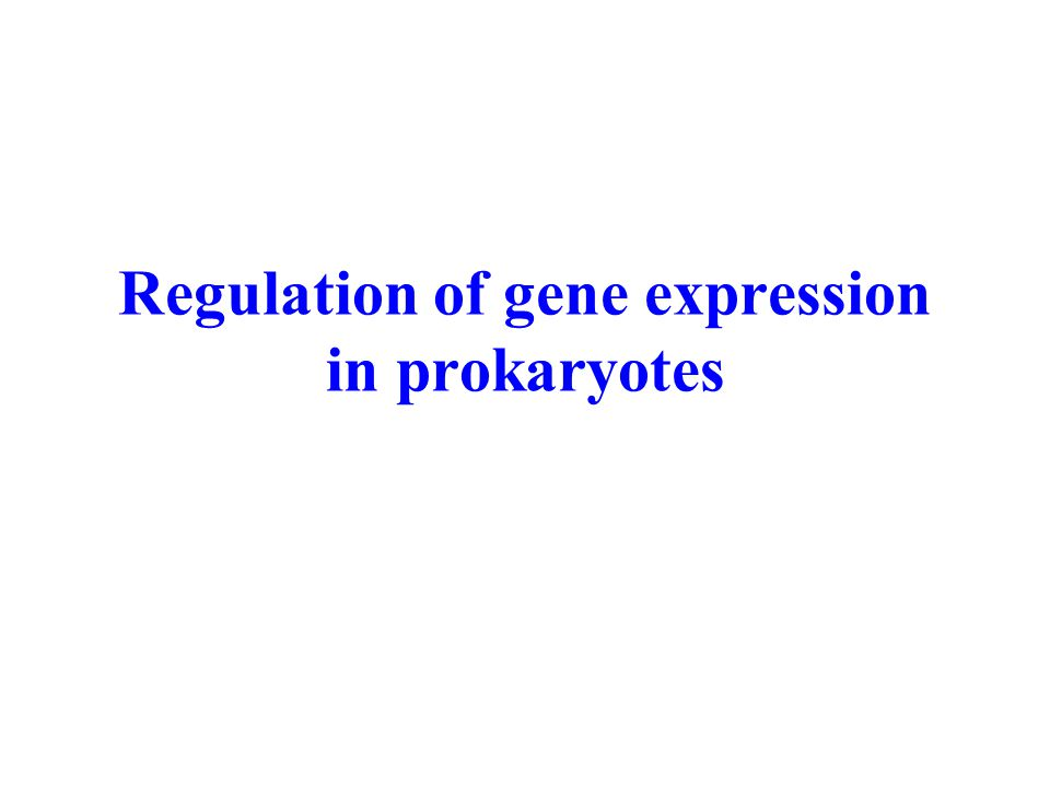 Regulation of gene expression in prokaryotes