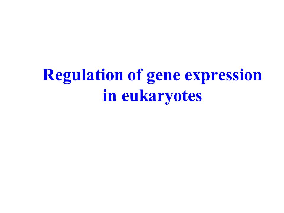 Regulation of gene expression in eukaryotes