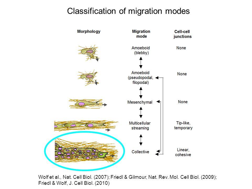 Classification of migration modes Wolf et al., Nat.