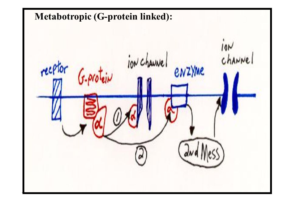 Metabotropic (G-protein linked):