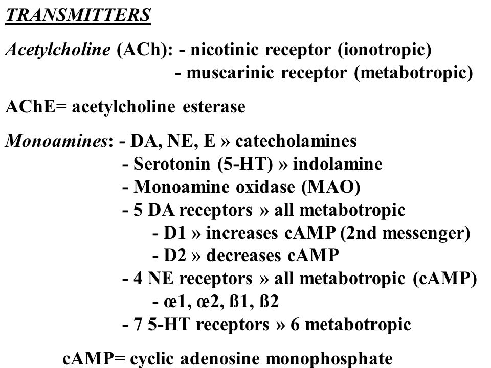 TRANSMITTERS Acetylcholine (ACh): - nicotinic receptor (ionotropic) - muscarinic receptor (metabotropic) AChE= acetylcholine esterase Monoamines: - DA, NE, E » catecholamines - Serotonin (5-HT) » indolamine - Monoamine oxidase (MAO) - 5 DA receptors » all metabotropic - D1 » increases cAMP (2nd messenger) - D2 » decreases cAMP - 4 NE receptors » all metabotropic (cAMP) - œ1, œ2, ß1, ß2 - 7 5-HT receptors » 6 metabotropic cAMP= cyclic adenosine monophosphate