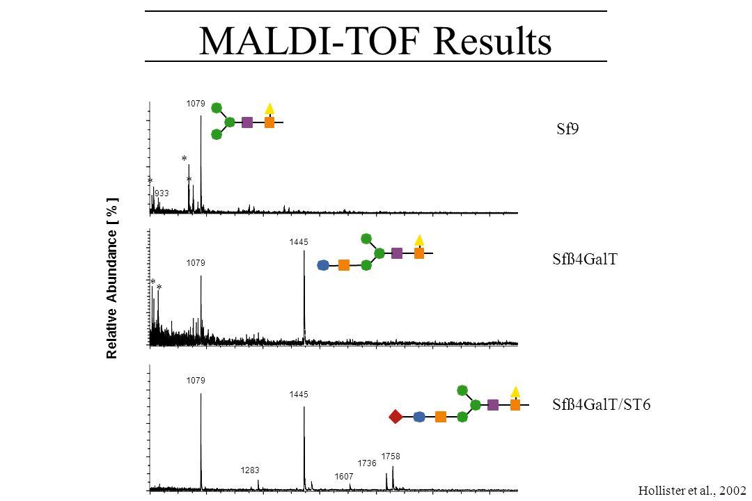 HPAEC-PAD Results SialylGalGlcNAcM3F M3 M3F GalGlcNAcM3F Sf9 Sfß4GalT Sfß4GalT/ST6 Hollister et al., 2002
