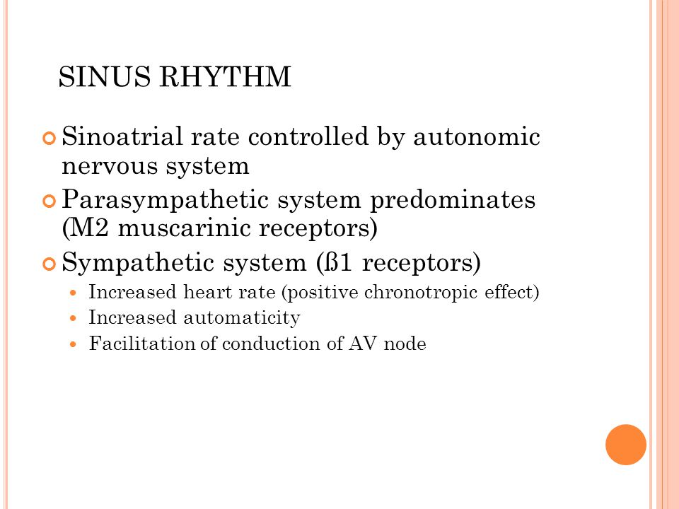 Sinoatrial rate controlled by autonomic nervous system Parasympathetic system predominates (M2 muscarinic receptors) Sympathetic system (ß1 receptors) Increased heart rate (positive chronotropic effect) Increased automaticity Facilitation of conduction of AV node SINUS RHYTHM