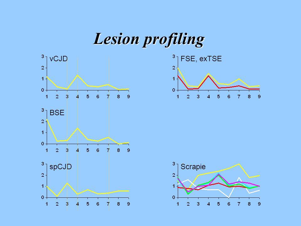 Lesion profiling Scrapie BSE FSE, exTSEvCJD spCJD