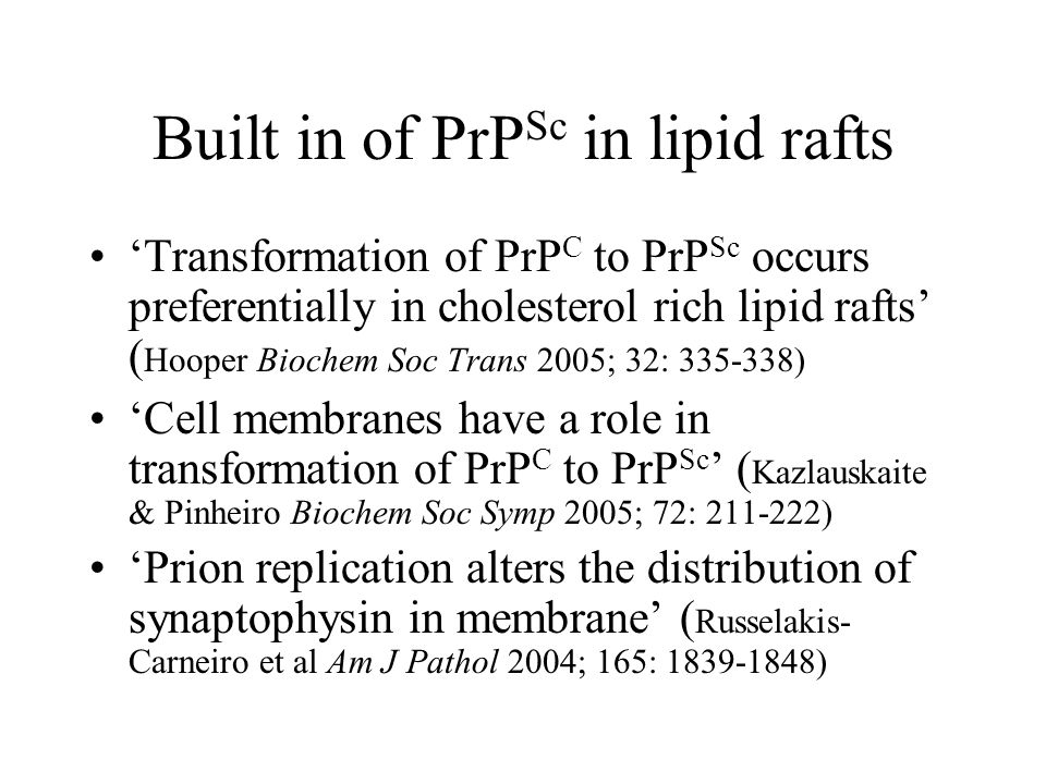 Built in of PrP Sc in lipid rafts 'Transformation of PrP C to PrP Sc occurs preferentially in cholesterol rich lipid rafts' ( Hooper Biochem Soc Trans 2005; 32: 335-338) 'Cell membranes have a role in transformation of PrP C to PrP Sc ' ( Kazlauskaite & Pinheiro Biochem Soc Symp 2005; 72: 211-222) 'Prion replication alters the distribution of synaptophysin in membrane' ( Russelakis- Carneiro et al Am J Pathol 2004; 165: 1839-1848)