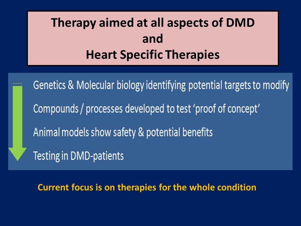 Therapy aimed at all aspects of DMD and Heart Specific Therapies Current focus is on therapies for the whole condition