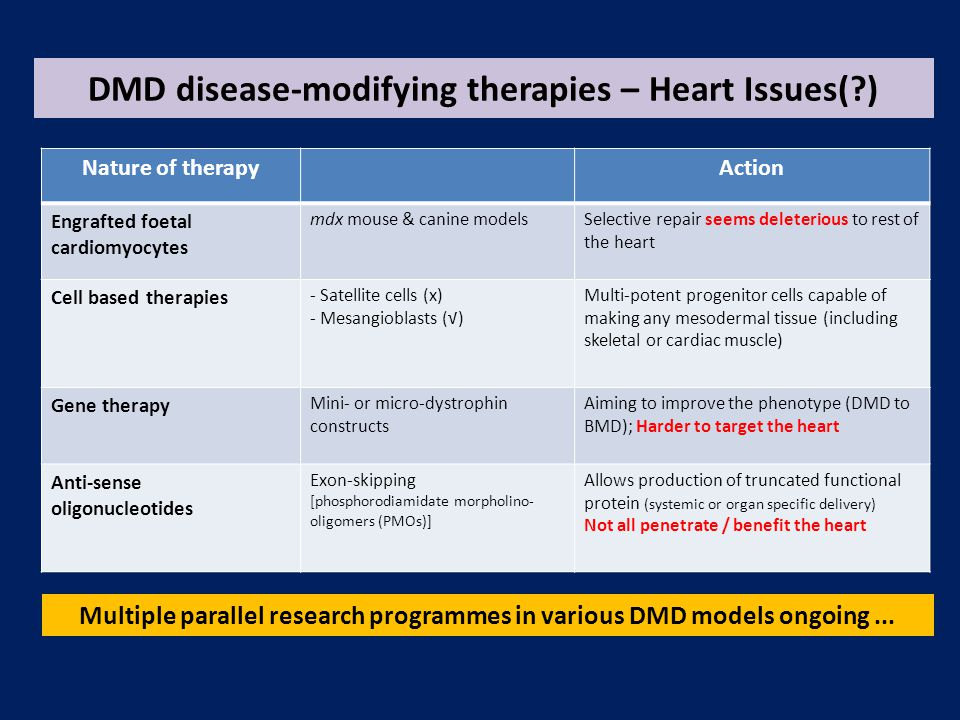 DMD disease-modifying therapies – Heart Issues( ) Nature of therapyAction Engrafted foetal cardiomyocytes mdx mouse & canine modelsSelective repair seems deleterious to rest of the heart Cell based therapies - Satellite cells (x) - Mesangioblasts (√) Multi-potent progenitor cells capable of making any mesodermal tissue (including skeletal or cardiac muscle) Gene therapy Mini- or micro-dystrophin constructs Aiming to improve the phenotype (DMD to BMD); Harder to target the heart Anti-sense oligonucleotides Exon-skipping [phosphorodiamidate morpholino- oligomers (PMOs)] Allows production of truncated functional protein (systemic or organ specific delivery) Not all penetrate / benefit the heart Multiple parallel research programmes in various DMD models ongoing...