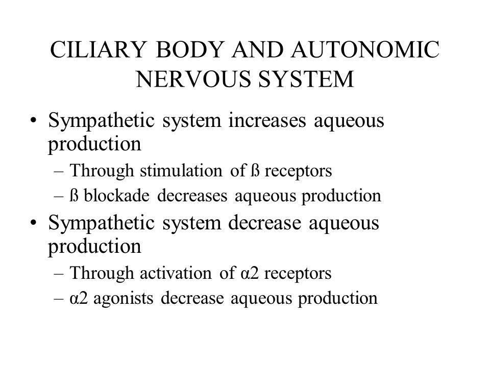 CILIARY BODY AND AUTONOMIC NERVOUS SYSTEM Sympathetic system increases aqueous production –Through stimulation of ß receptors –ß blockade decreases aq