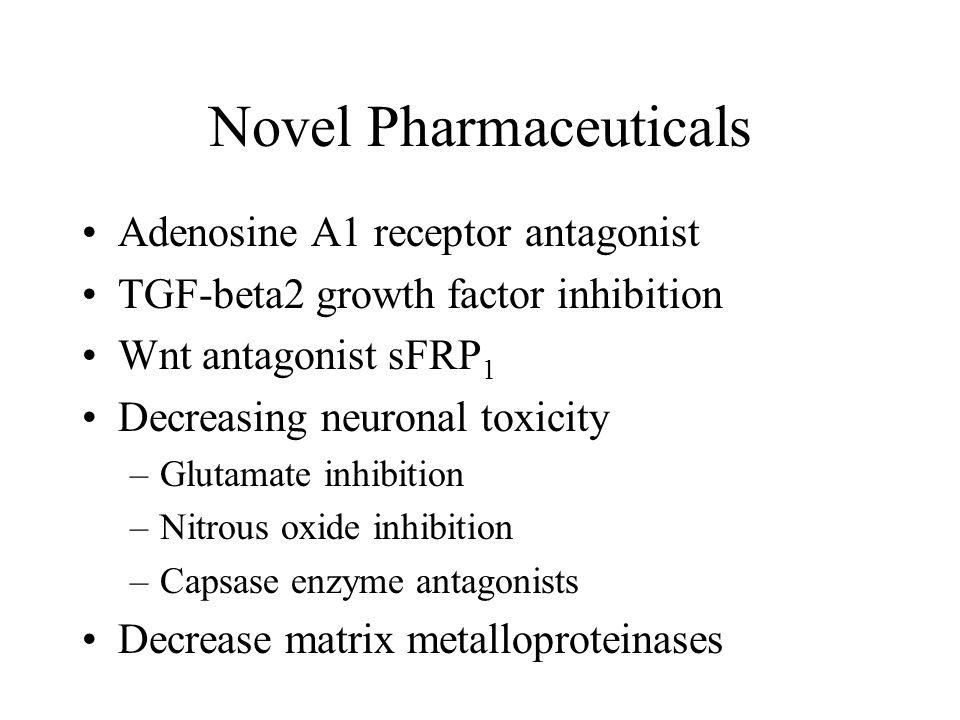 Novel Pharmaceuticals Adenosine A1 receptor antagonist TGF-beta2 growth factor inhibition Wnt antagonist sFRP 1 Decreasing neuronal toxicity –Glutamate inhibition –Nitrous oxide inhibition –Capsase enzyme antagonists Decrease matrix metalloproteinases