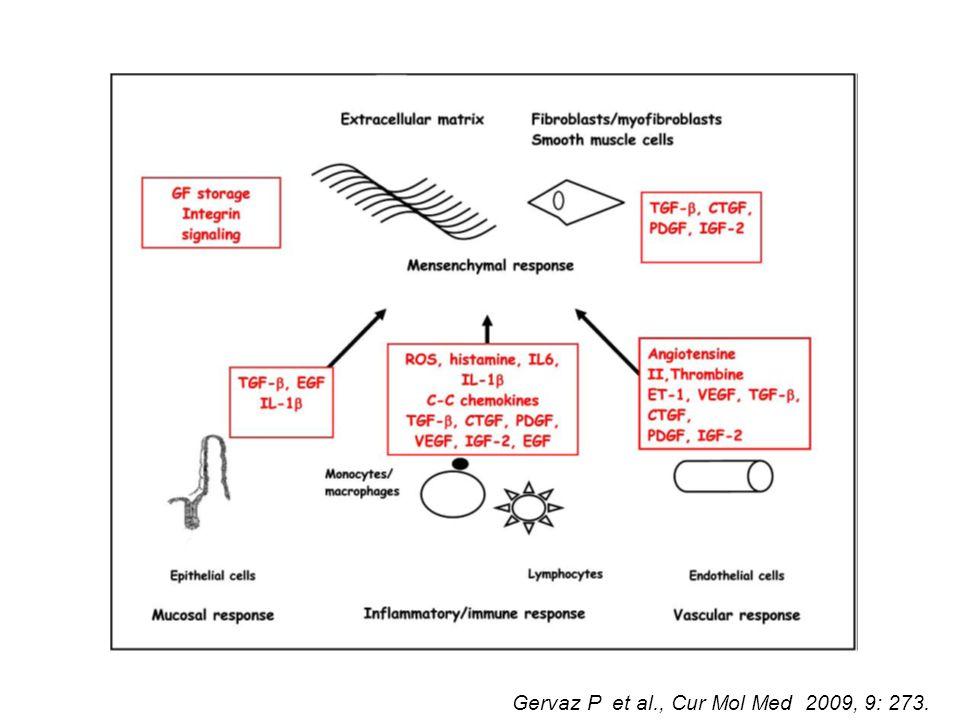 Gervaz P et al., Cur Mol Med 2009, 9: 273.