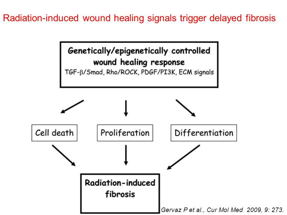 Radiation-induced wound healing signals trigger delayed fibrosis Gervaz P et al., Cur Mol Med 2009, 9: 273.