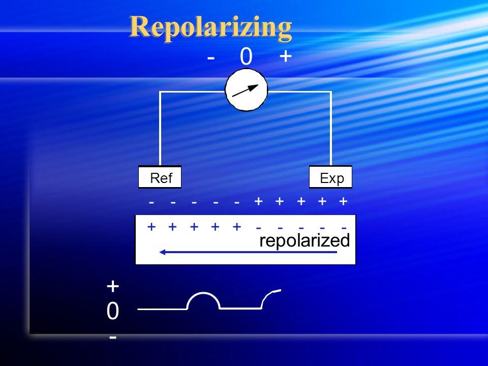 Repolarizing +-0 RefExp repolarized 0 + - -----+++++ +++++-----