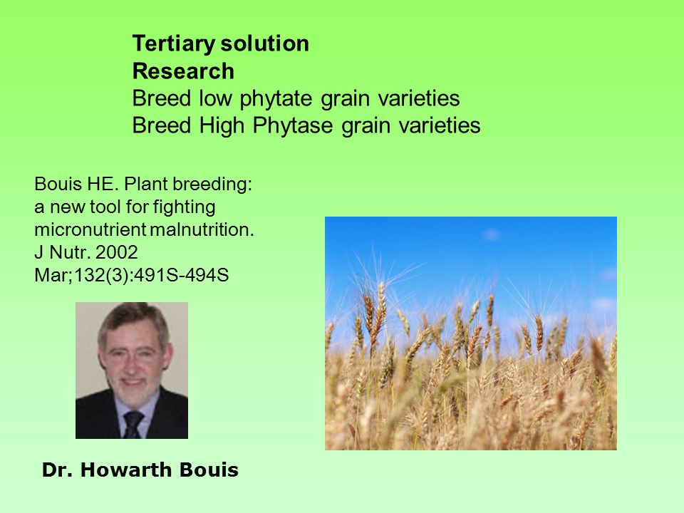 Tertiary solution Research Breed low phytate grain varieties Breed High Phytase grain varieties Bouis HE.