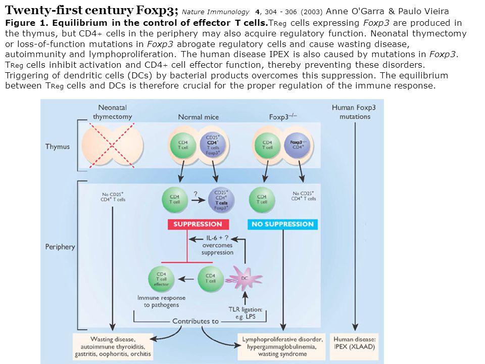 Twenty-first century Foxp3; Nature Immunology 4, 304 - 306 (2003) Anne O Garra & Paulo Vieira Figure 1.