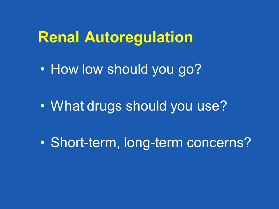 Renal Autoregulation How low should you go? What drugs should you use? Short-term, long-term concerns?