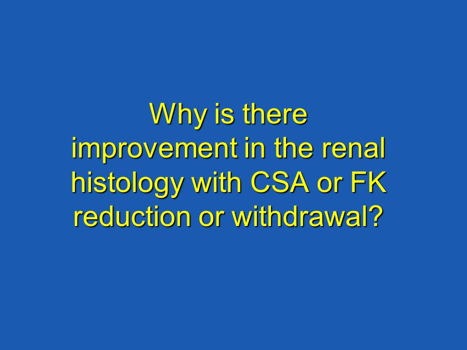 Why is there improvement in the renal histology with CSA or FK reduction or withdrawal?