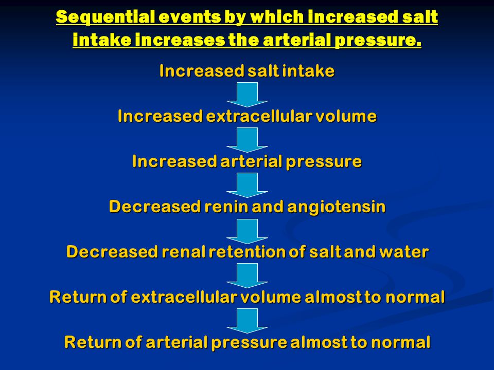 Sequential events by which increased salt intake increases the arterial pressure.